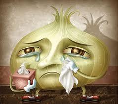 cebolla llora